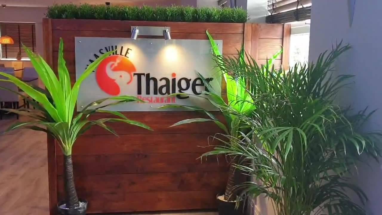 Naasville Thaiger Restaurant